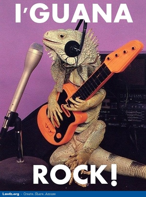 i guana rock iguana guitar meme lawlz laugh out loud on this humor site with funny pictures and