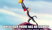 When your phone has no signals and you go all Lion King on it.