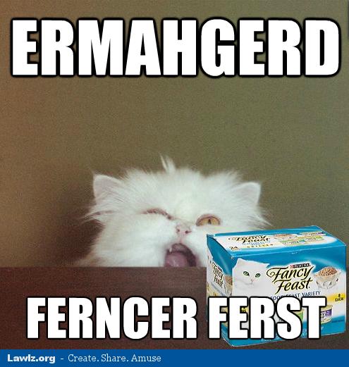 lol-cat-meme-ermahgerd-ferncer-ferst-fan