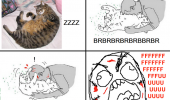 A rage comic. Undefended kitty belly. While the cat is sleeping, I play with it's belly and get my face all scratched up.