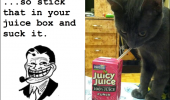 A kitten drinking from a Juicy Juice juicebox. So stick that in your juice box and suck it. Okay...