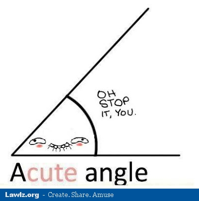 acute cute angle oh stop it you geometry meme lawlz laugh out loud on this humor site with funny pictures and,Geometry Memes