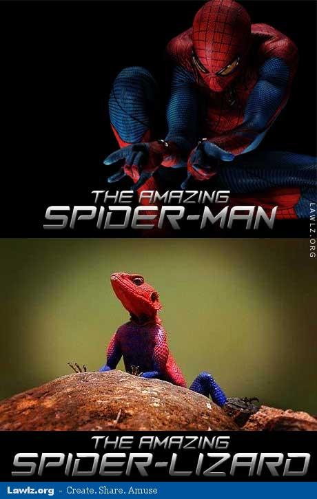 Spiderman movie meme - photo#22