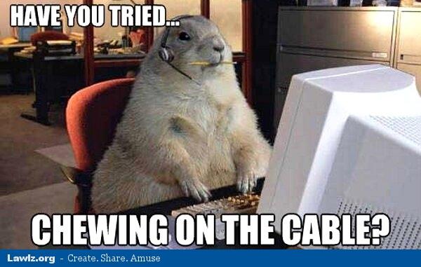 Cat  Cable Meme