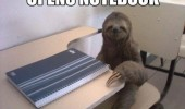 opens-notebook-class-is-over-school-sloth meme