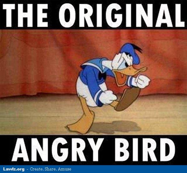 Funny angry bird memes - photo#16