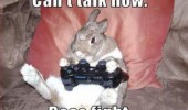 cant-talk-now-boss-fight-rabbit-bunny-playstation-3-controller-meme