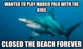 A meme of a misunderstood shark. Wanted to play Marco Polo with the kids. Closed the beach forever.