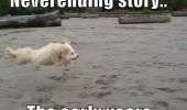 neverending-story-the-early-years-dog-meme