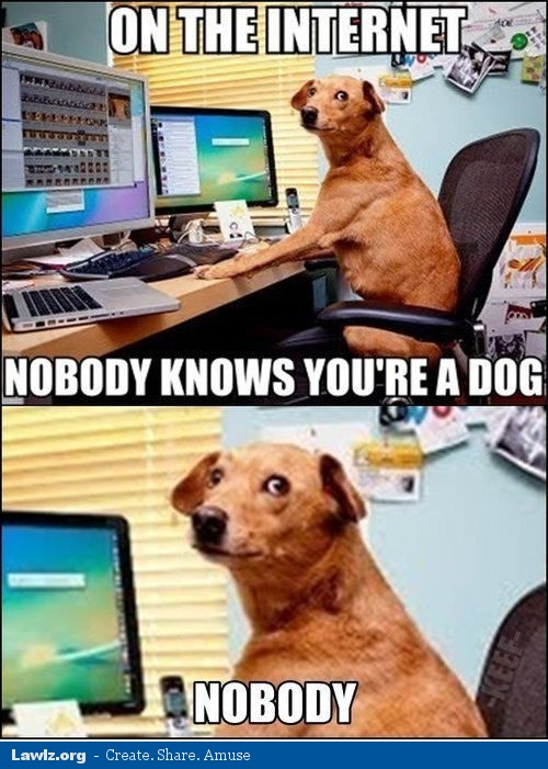 on-the-internet-nobody-knows-youre-a-dog-meme.jpg
