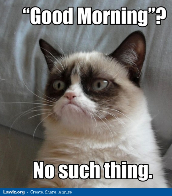 grumpy-cat-meme-good-morning-no-such-thing.jpg