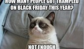 A grumpy cat meme. How many people got trampled on Black Friday this year? Not enough.