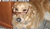 did-math-cant-afford-the-cat-dog-lawlz-meme