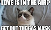 grumpy-cat-meme-love-air-gas-mask