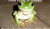 A funny picture of a green frog that is smiling.