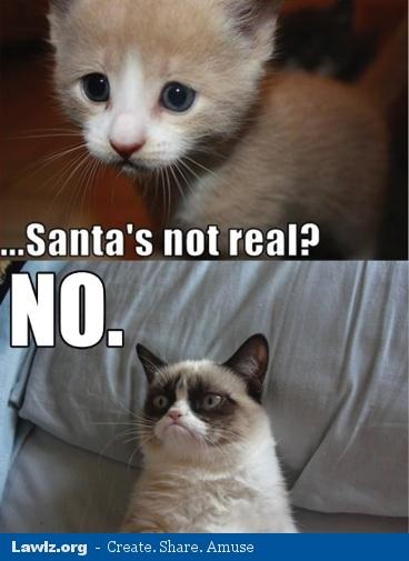 grumpy-cat-meme-santas-not-real.jpg